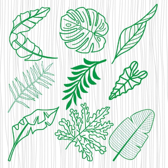 Tropical Leaves Svg Tropical Leaf Clipart Hand Drawn Etsy Download 65,000+ royalty free tropical leaves vector images. tropical leaves svg tropical leaf clipart hand drawn monstera leaf svg palm leaf svg tropical party decor cricut eps dxf png pdf s