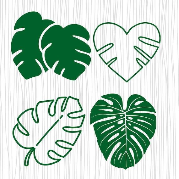 Tropical Leaves Svg Tropical Leaf Clipart Monstera Leaf Svg Etsy Can be used in wall decoration. tropical leaves svg tropical leaf clipart monstera leaf svg palm leaf svg tropical party decor cricut eps dxf png pdf svg file