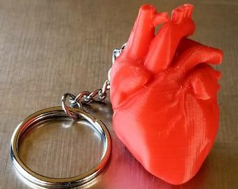 Anatomical Heart Keychain