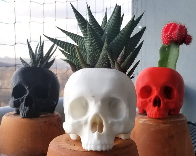 Featured listing image: Skull Succulent Planter || Gothic Home Decor Goth Garden Accessory Witchy Plant Pot Makeup Brush Holder || 3D Printed