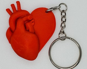 Anatomical Heart on Heart Charm