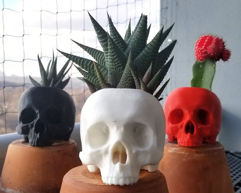 Skull Succulent Planter  goth gothic garden accessories Orange