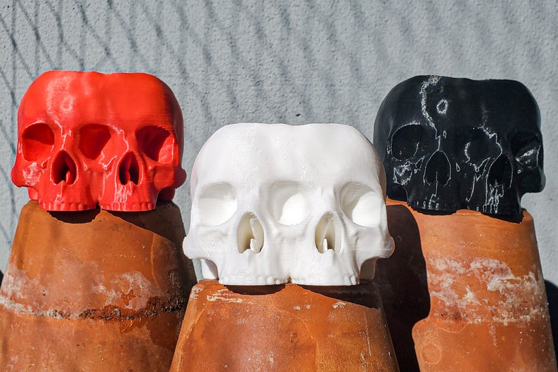Conjoined Skull Succulent Planter  goth gothic garden image 0