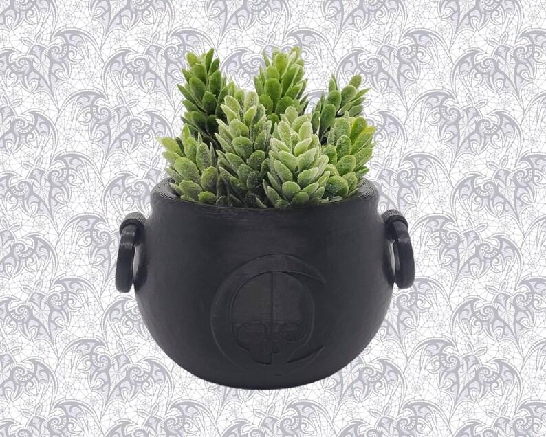 Cauldron Succulent Planter  Witchy Home Decor Goth Garden image 1