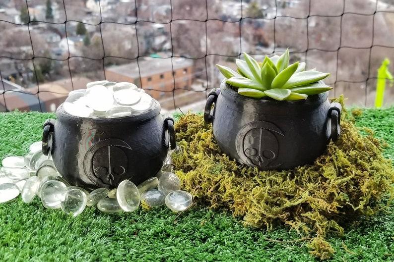 Cauldron Succulent Planter   gothic garden accessories image 0