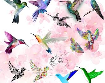 20 Hummingbird SVG, PNG, Colibri SVG, Hummingbird print, Hummingbird Cricut, Silhouette, Bird svg, Birds svg, Hummingbird Drawing Vector