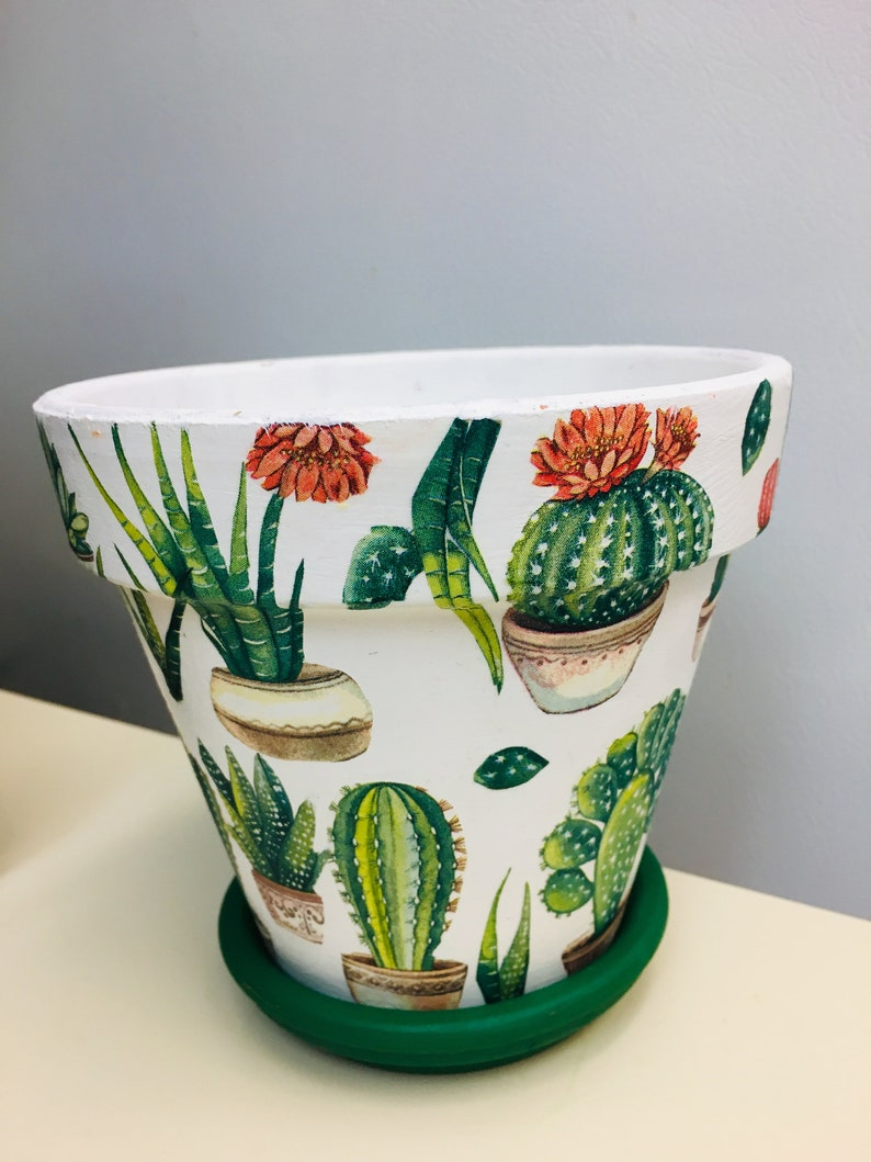 Cactus/'s Decoupaged 5.5/' on Terra Cotta Pots