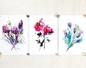 A4 Print Bundle, Peony, Lavender, Protea, Gift for flower lover, gift for gardeners, peony flower gift, flower art gift, flower room decor