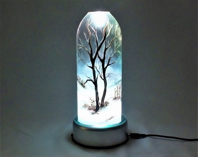 Winter Seasonal Bottle Lamp - 16 Color Changing Light RGB LED Remote Controlled - Bar Light - Glass Bottle - Decorative - Free Shipping