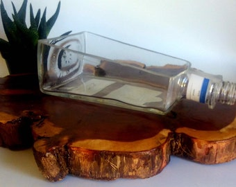 1800 Tequila Silver Liquor Bottle cut lengthwise / crafts / serving dish / Planter / Indoor Plants / Succulent Glass Terrarium / spoon rest