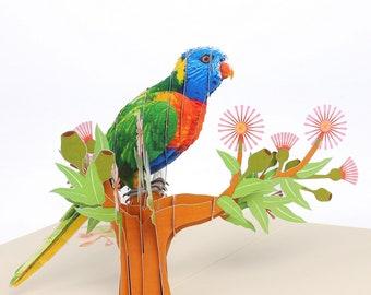 Parrot pop up 3D card/birthday/anniversary