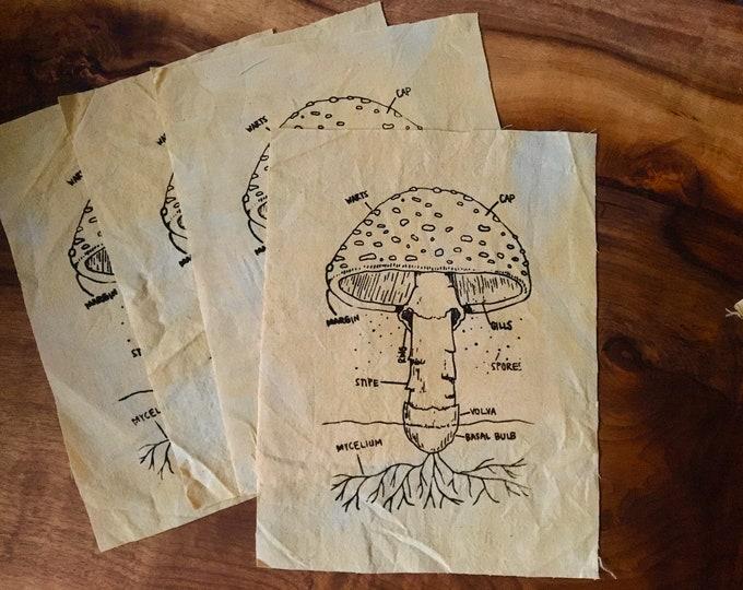 Amanita Anatomy Screen Printed Patch, Mushroom Patch, Fabric Patch