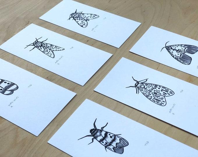 Set of 6 Moth Lino Prints