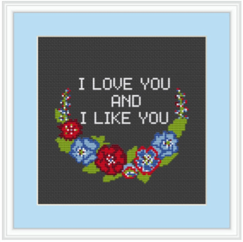MFM Xstitch Kit Modern Adult  Subversive Cross Stitch SSDGM I Love You And I Like You Starter Cross Stitch Kit My Favorite Murder MFM
