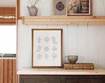 Fall Leaves Print, Leafy Art, Fall Home Decor, Leaf Poster, Thanksgiving Wall Decor, Maple, Acorns, Minimalist Fall Decor, Simple Leaf Print