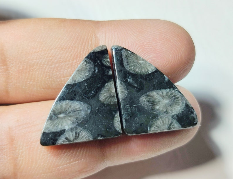 BLACK FOSSIL GEMST5ONE 18CT High Quality Natural Fossil Cabochon Pair Set Perfect Earring Size Black Fossil Loose Gemstone Jewelry 20x16x3MM