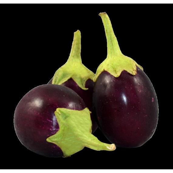 Eggplant Black Tasty Natural Healthy Nutritious Vegetable Garden Seeds 100 PCS