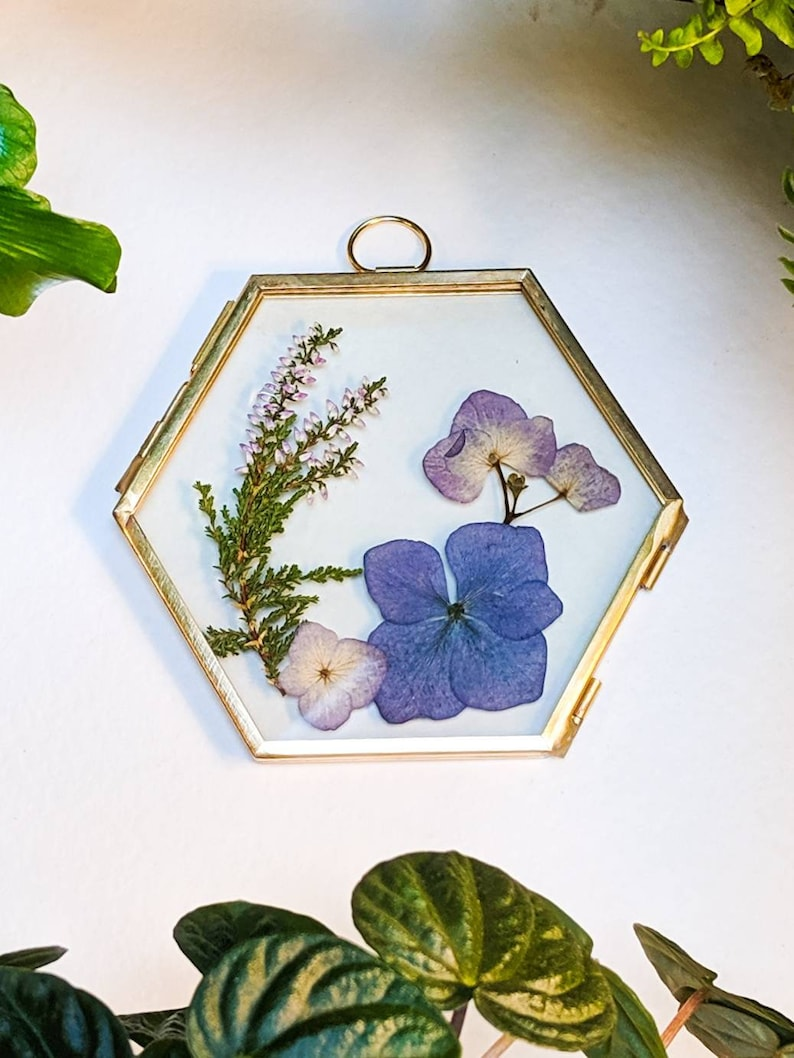 Botanical real Hydrangea and Heather flowers hexagon glass & image 0
