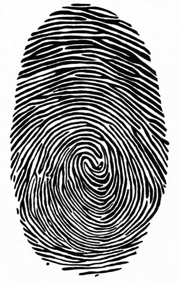 Hand Drawn Real Human Fingerprint Original Art Forensic Csi Etsy