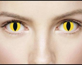 Wild Cat Contact Lenses