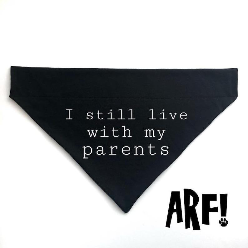 Slip on dog and cat bandana I still live with my parents