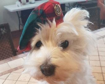 Balmoral Bonnet dog hat, Dog hat, Caubeen dog hat, Dog cap, Dog bonnet