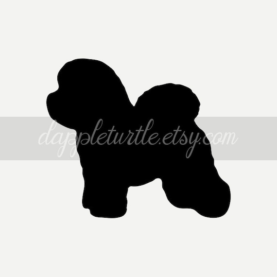 Bichon Frise Silhouette Instant Download Png And Svg Files Etsy