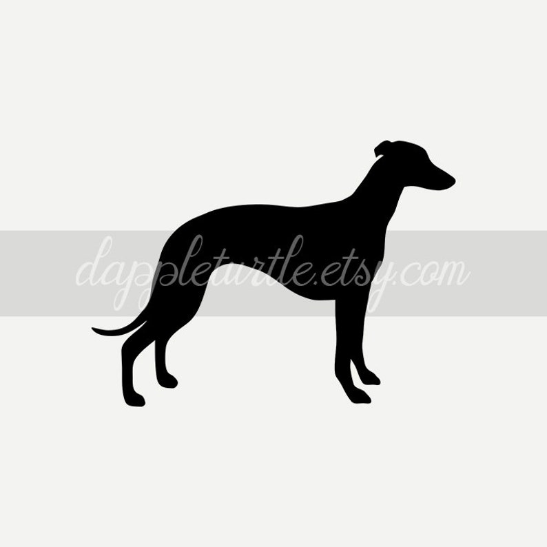 Whippet silhouette instant download PNG and SVG files suitable for commercial use