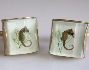 Solid Bronze Seahorse Cufflinks