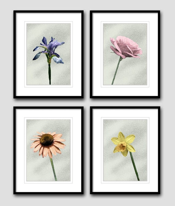 Purple Flowers 8 x 10 Flowers 8x10 GLOSSY Photo Picture IMAGE #2