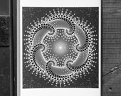 Divine Inspiration  - Fine Art Print