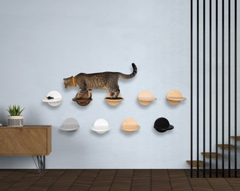 Amazing cat steps Cat climb wall Cat shelves and perch wall Wall mounts for cats Cat highway shelves Modern cat wall shelves Floating stairs