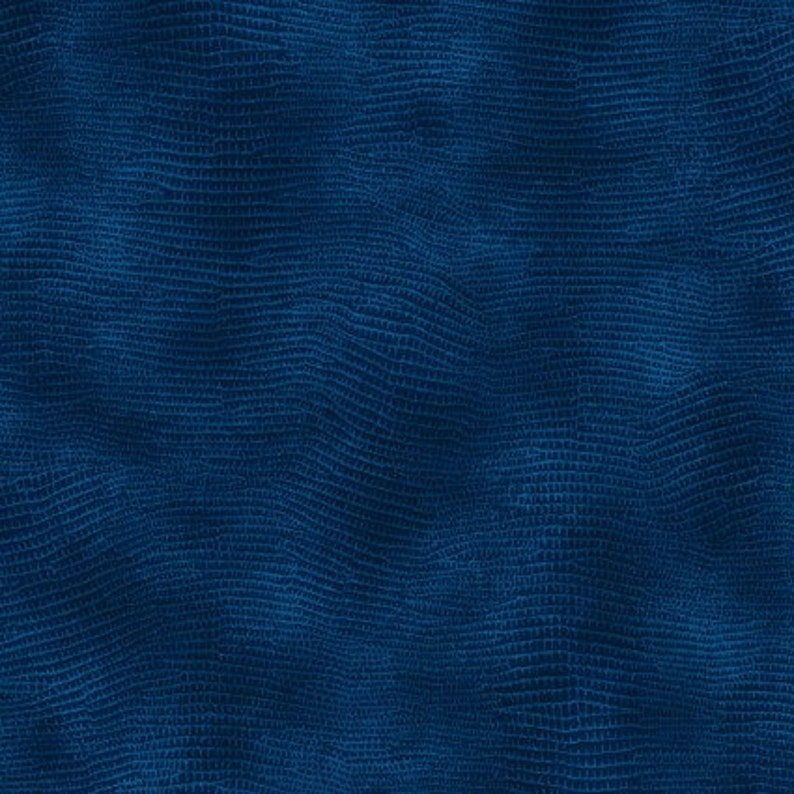 Equipoise Blue Wide Back 108 WOF QUILT BACKING 3 Yard Cut #183 20023