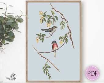 Robin cross stitch pattern PDF, Bird embroidery design gift, digital download, Printable chart