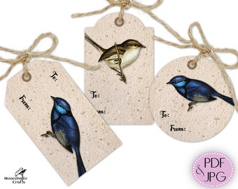 Printable gift tags template, Banded Wrens or Splendid Wrens bird to from present labels set, gift wrapping cut outs, digital download