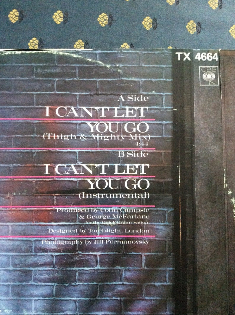 Haywoode- I can't let you go thigh and mighty mix 12' single