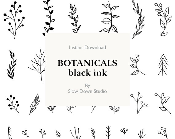 Hand Drawn Botanical Clipart Hand Drawn black leaf leaves | Etsy