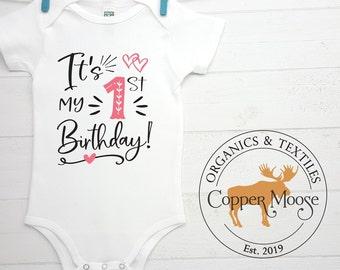 Frog party cake smash Garden bodysuit monogrammed Baby Girl\u2019s Frog Birthday bodysuit First Birthday bodysuit personalized
