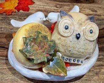 Owl Gifts | Soap Gift Set | 5 Pc Gift for Owl Lovers | Owl Lovers Gifts | Handmade | Owl Soaps | Fall Soaps | Owl Decor | Natural Skincare