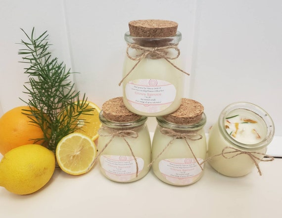7 oz citrus spruce scented soy wax candle.
