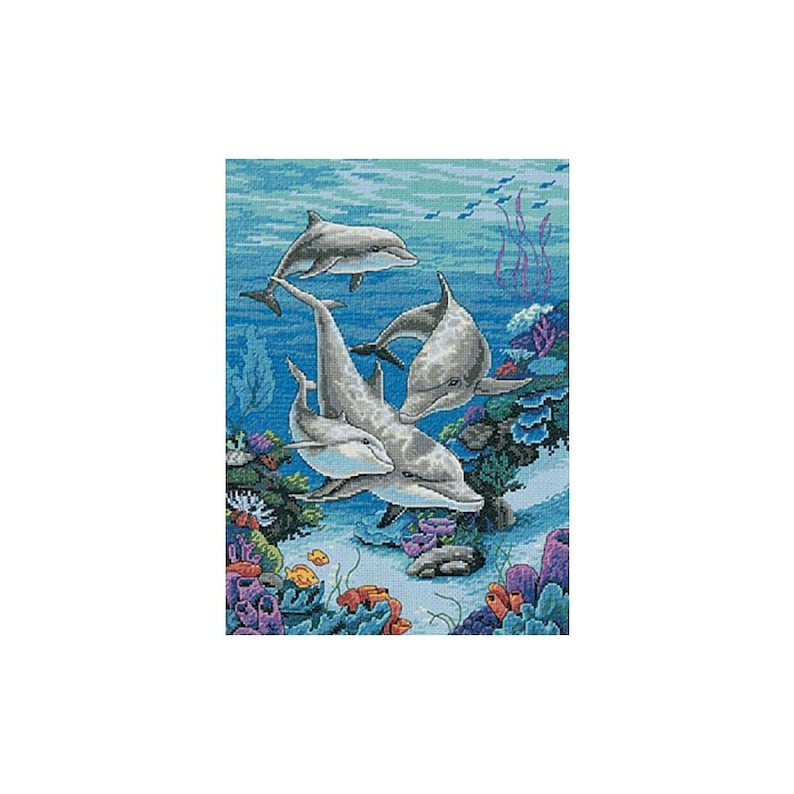 Dimensions Dolphins/' DOMAIN Blue