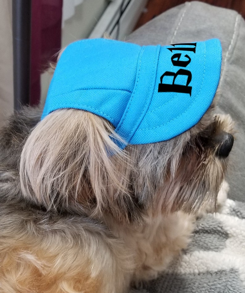 Cat Hat Custom Pet Hat 5 Famous Fonts to Choose From Pet Base Ball Cap Dog Cap with ear holes Dog Hat |