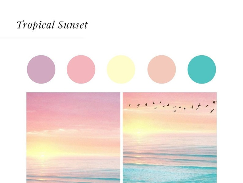 50 Color Palette Instagram Highlight Icons Instagram Etsy