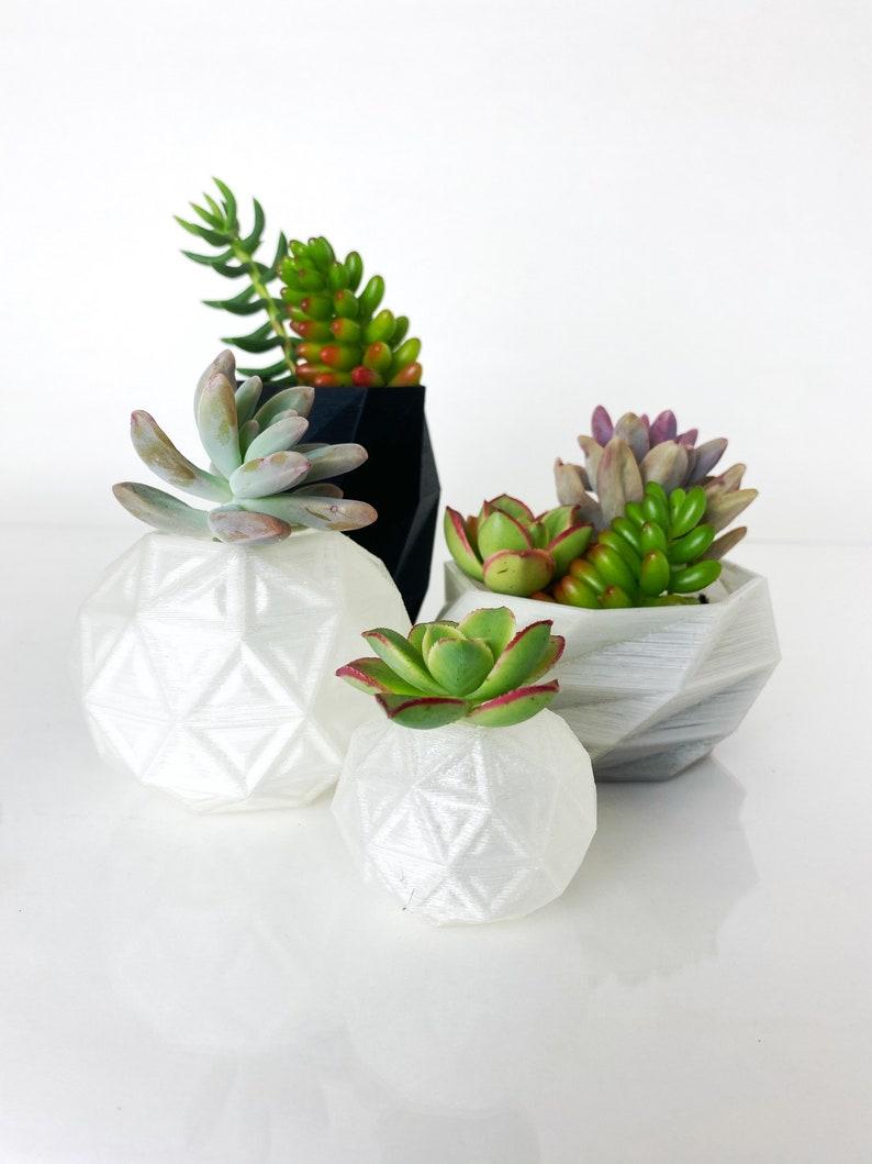 Succulent Pots  Set of 4 image 0