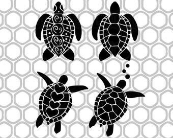 schildkröte zeichnen farbe