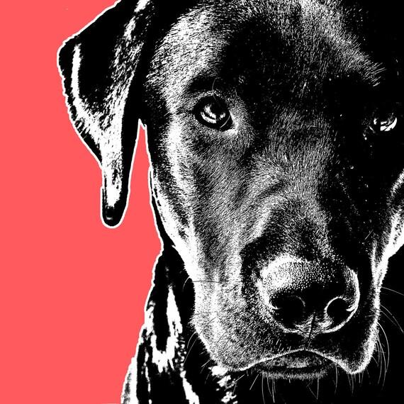 Bold Dog Art Prints Pets Pop Art Portrait Dog Prints Animal Etsy