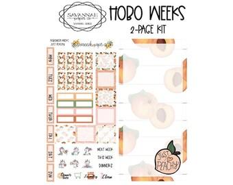 Hobonichi Kits