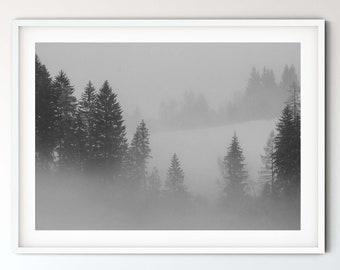 Photography Cloud Forest II (Alps), 50 x75 cm, 60 x 90 cm, 70 x 105 cm, large poster