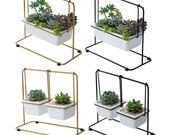Succulent Ceramic Planter Pot, Terrarium Miniature, Desk Decor, DIY Terrarium Succulent Accessories, Home Display, Garden Tools