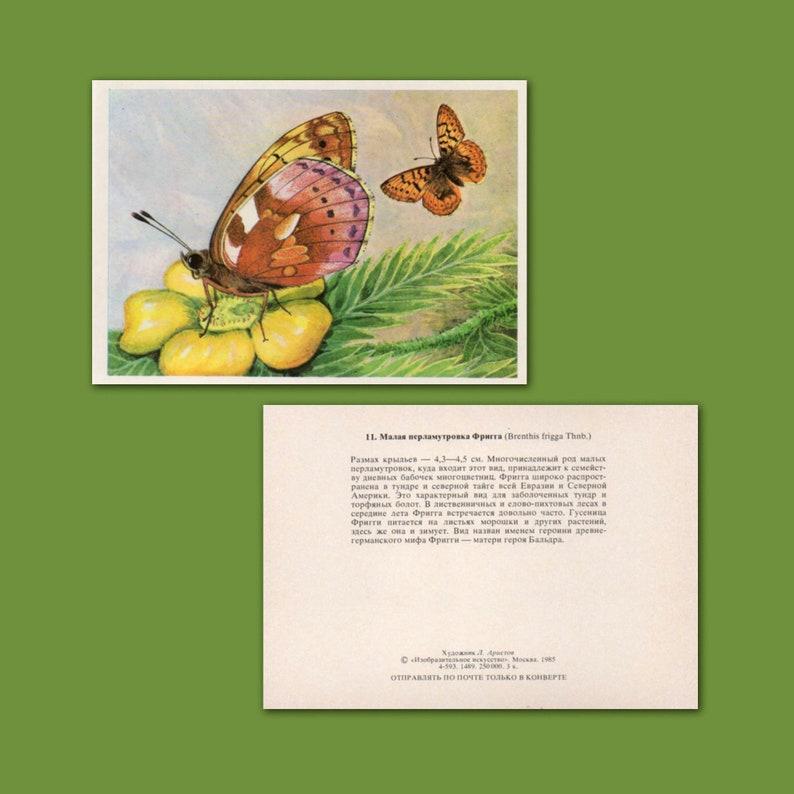 1985 Set of 16 Vintage Rare Postcards Butterflies Made in USSR Aristoff Artist L \u00abFine Art\u00bb